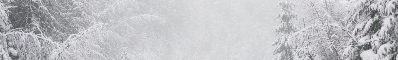Winter Bettwäsche fleuresse
